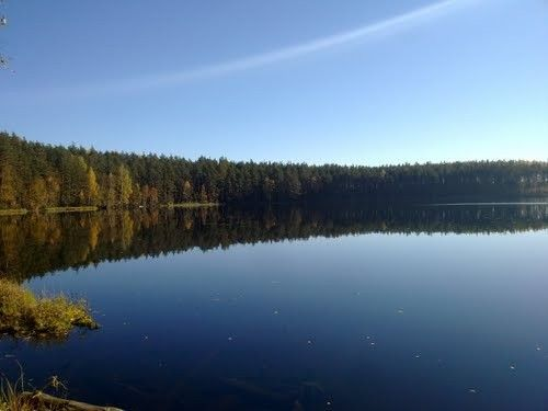 Шумновские озера конаково рыбалка